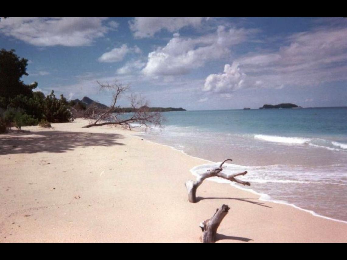 Hillsborough beach on Carriacou, source Wikipedia