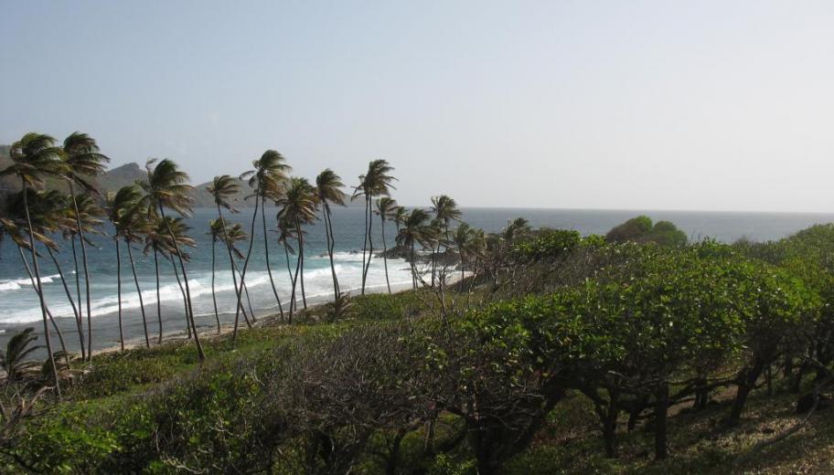 The black sandy beach at Petit Nevis