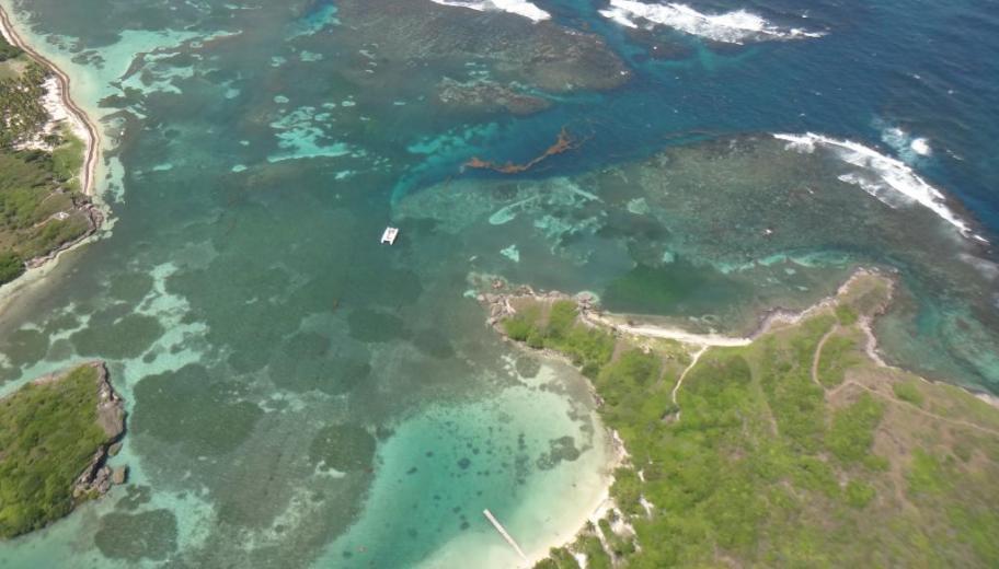 The Baie des Anglais, Martinique